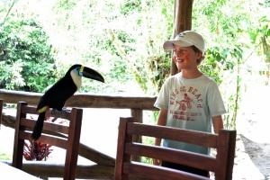 amazon toucan