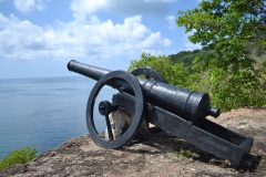 Morgan's cannon